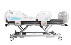 SURI Electric Five Functions Bed D