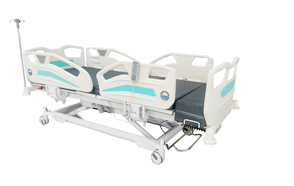 ANOTEROS Electric Five Functions Bed
